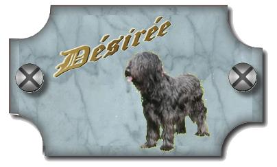 plaque Desiree