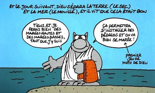 La-bible-selon-le-chat-6