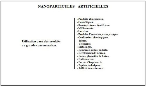 Nanoparticules-artificielles_2-Dec-2010-copie-4.jpg