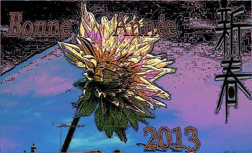 vouex 2013