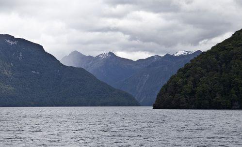 nouvelle-zelande-5652.jpg