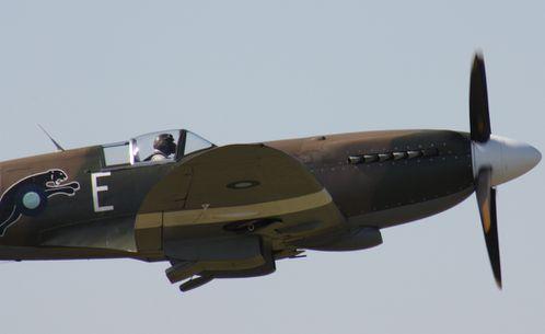 Spitfire (40)