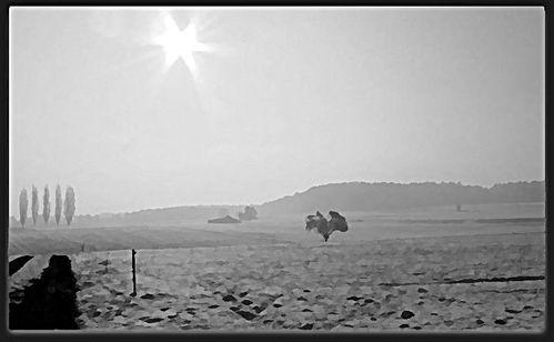 winter-006-1_Underpainting_2jpg.jpg