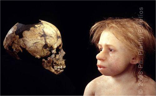 Neandertal_Enfant_Daynes_02.jpg