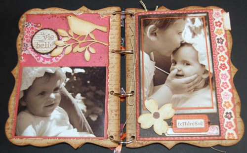 mini-album-kit-fee-du-scrap-juin-2010 3914 500 pixels