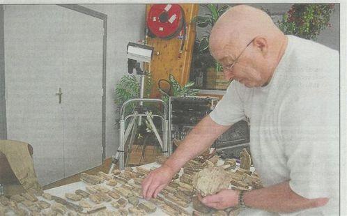 expo bois fossilisé 21 05 2011