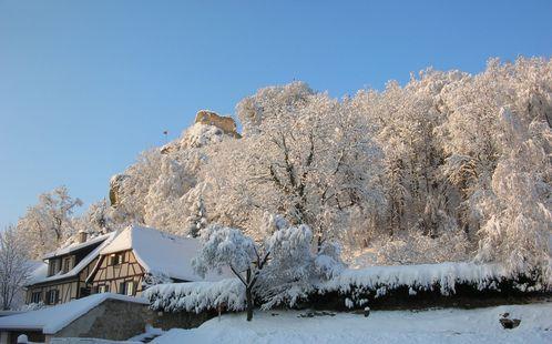 Neige-et-grand-froid-023.JPG