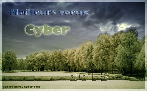 voeux cyber 2013