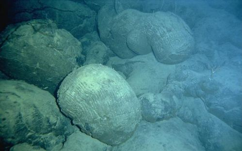 Pillow-lava----Loihi---Hawai-undersea-research-laboratory.jpg
