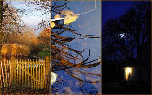 bethanie_novembre_2011.jpg