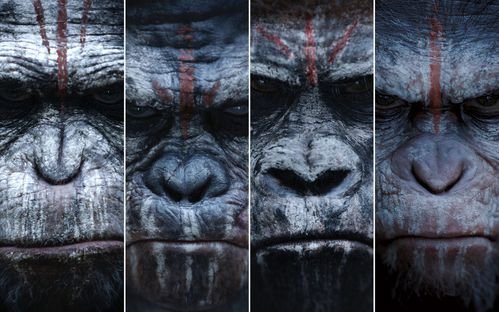 Dawn of the Planet of the Apes - 2014- Matt Reeves
