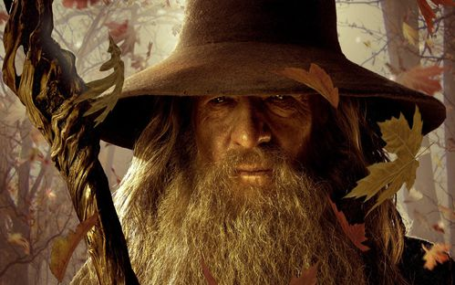 gandalf-the-gray-wallpapers_35610_1920x1200.jpg