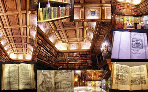 Visite-conference-chateau-de-Chantilly-19-mai-2013-biblio.jpg