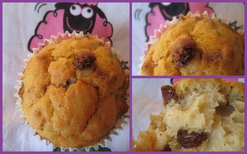 muffins-au-sirop-d-agave-et-lait-fermente.jpg