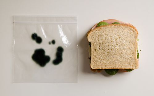 anti-theft-lunch-bags-3