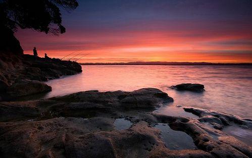 Fishing-at-Dusk-Sunset-at-Coyle-Park--Pt-Chevalier--Aucklan.jpg