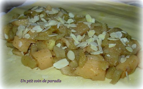 chausson-pommes-coings.jpg