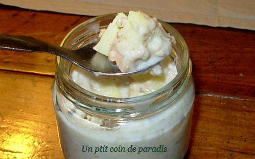 porridge-avoine-pomme-coco.5.jpg