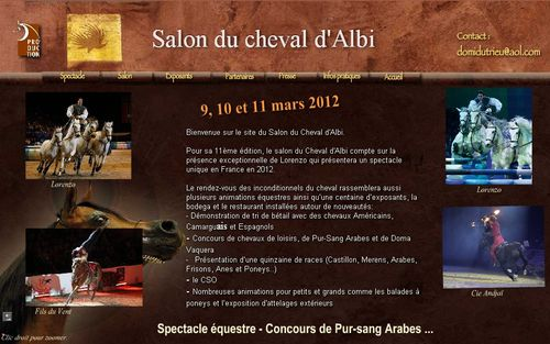 Le blog de ecuriecaillougris pension pour chevaux ou il for Salon de the albi