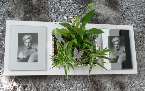 TABLEAU VEGETAL PORTE PHOTO 1