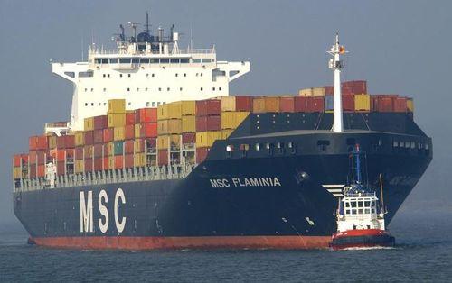 MSC-Flaminia.JPG