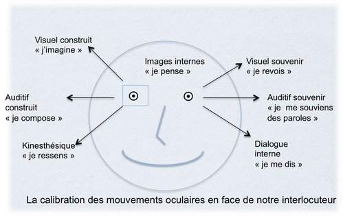 calibration-mouvement-oculaire-copie-1.png