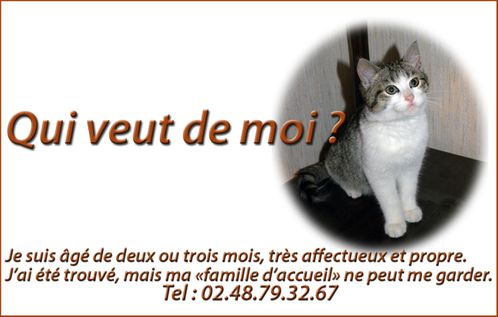 annonce.jpg
