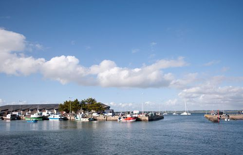 L-HERBAUDIE-RE-NOIRMOUTIER-LE-PORT.jpg