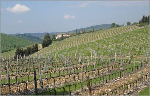 Toscane14.jpg