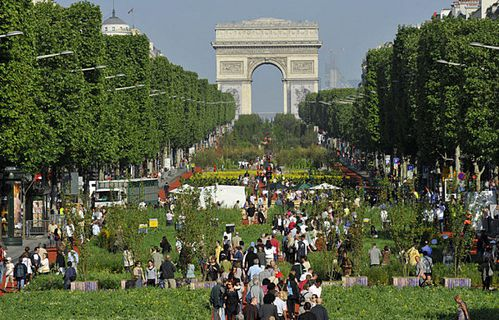 sem43-Z11-nature-capitale-champs-elysees