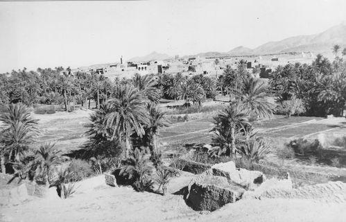 1960-017--Palmeraie-de-Bou-Semghoun-jpg