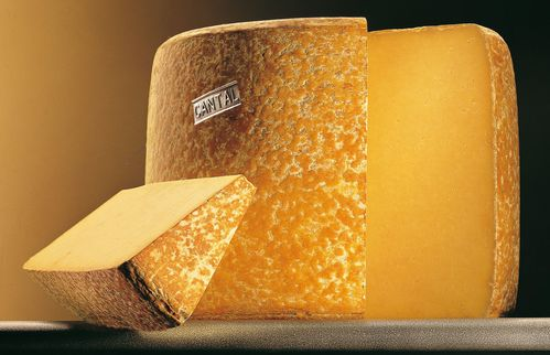 cantal - fourme