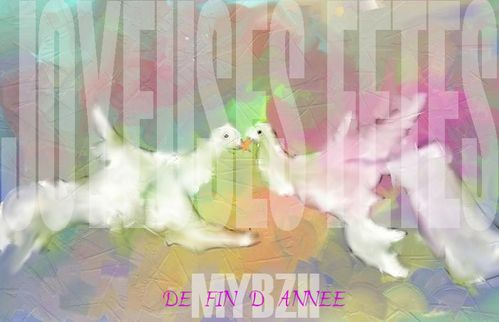 FIN-D-ANNEE-2011.jpg