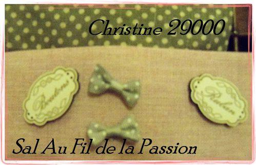 christine 29000 4
