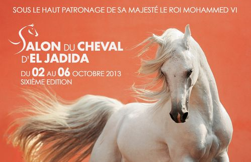 salon du cheval el jadida 2013
