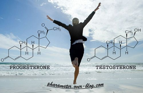 11 06 20 Progesterone Vs Testosterone