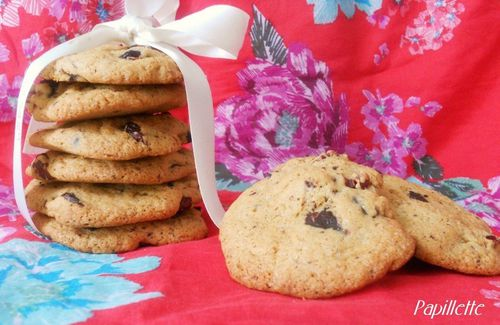 cookies pépites chocolat cranberries
