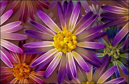 theme-de-fleur.jpg