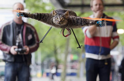 orvillecopter-flying-cat-04