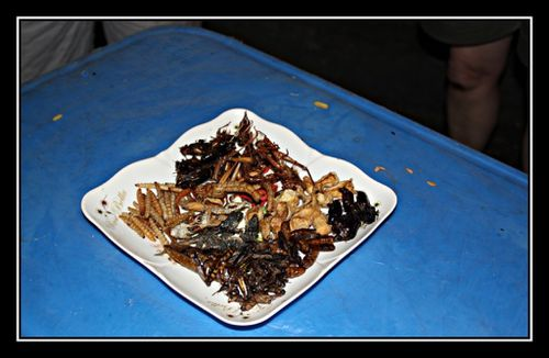 N05 Insect Thai