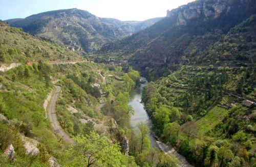 Lulu VI Paques Provence 03