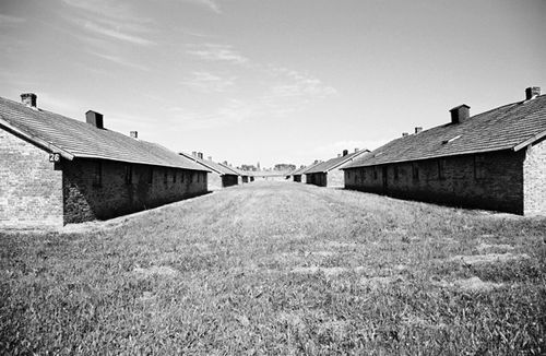 photo-auschwitz2-baraquements-.jpg