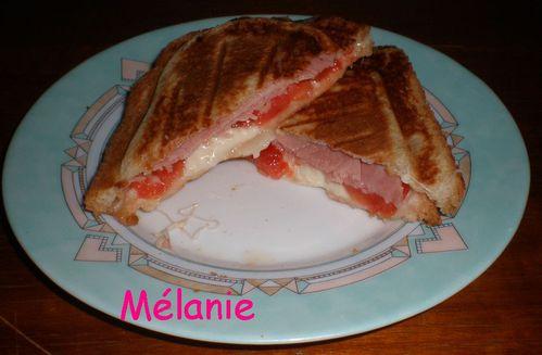 croque_monsieur_tomate_mozzarella.jpg