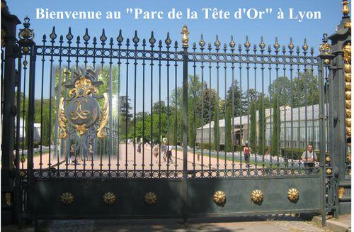 Bienvenue au Parc de la Tête d'Or
