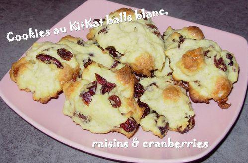 Cookies balls blancs, raisins & cranberries2