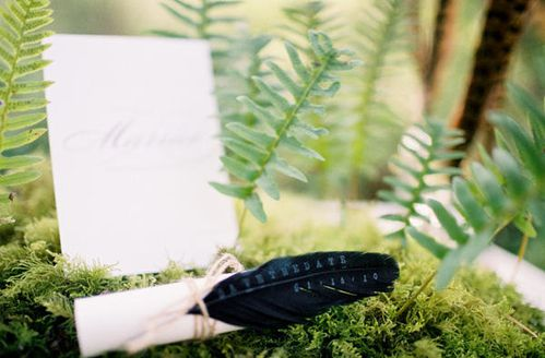 feather-wedding-save-the-date.jpg