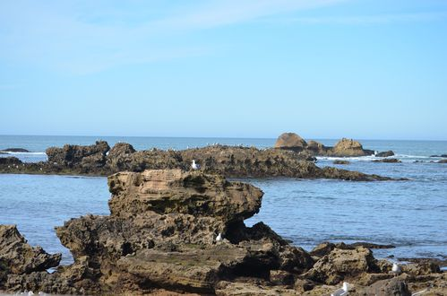 images-6 0187