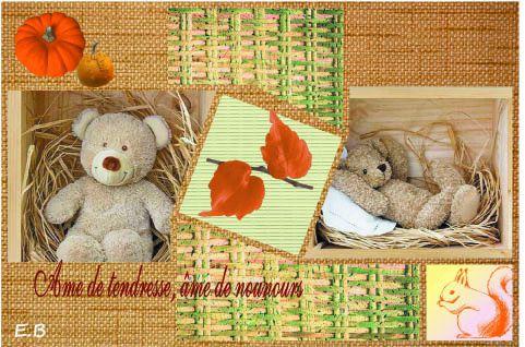 ourson d'automne