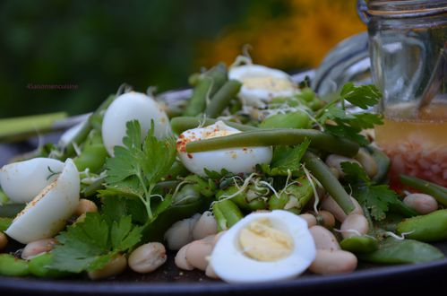 Salade aux 5 haricots 3