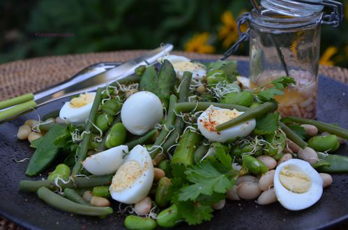 Salade aux 5 haricots 4